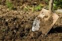 Tuinaanleg en -onderhoud